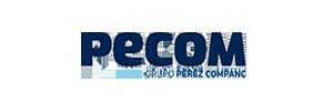 Pecom2